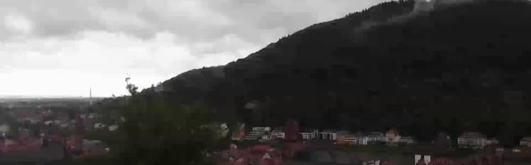 Livecam Heidelberg - Schlossberg - Altstadt und Alte Brücke