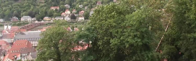 Livecam Heidelberg - Schlossberg - P&M