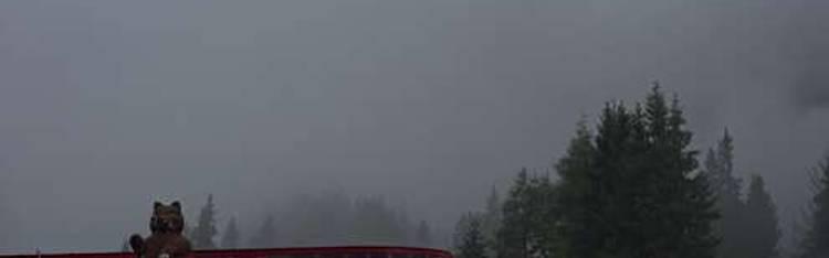 Livecam Berwang-Sonnalmbahn Bergstation