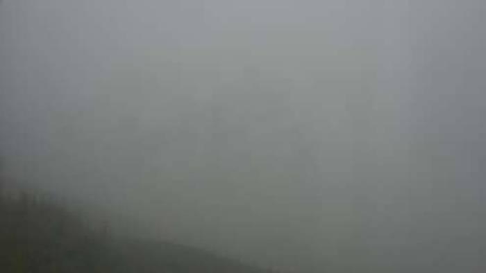 HD Live Webcam Mayrhofen - Zillertal - Horberg Hintertrett