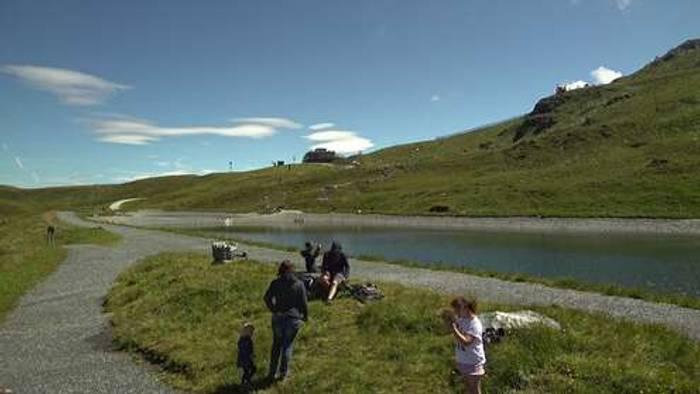 HD Live Webcam Wald im Pinzgau - Mitterleger Bergstation