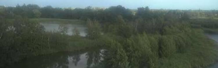 Livecam Zonhoven - De Wijers