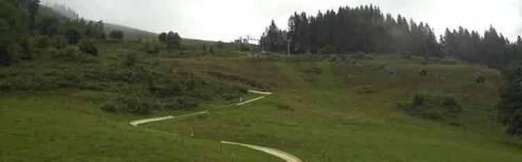 Livecam Sommerrodelbahn Saalfelden