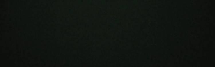 Livecam Feldberg im Schwarzwald - Feldbergbahn