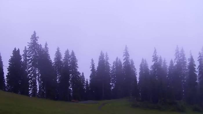 HD Live Webcam Dienten, Bürglalm Bergstation
