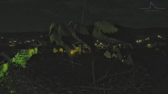 HD Live Webcam Pfreimd - Storchencam